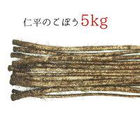 【ふるさと納税】仁平のごぼう5kg