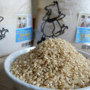 【ふるさと納税】★新米★ 合鴨農法完全無農薬米「愛鴨米」〈玄米〉3kg×2