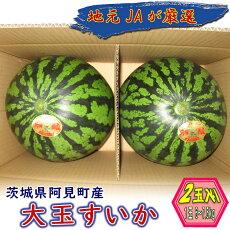 【ふるさと納税】23-06茨城県産大玉すいか2玉(1玉6〜7.5kg)【JA水郷つくば】