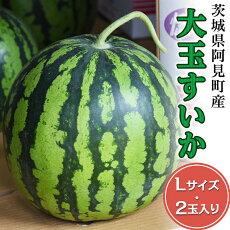 【ふるさと納税】32-01茨城県産大玉すいか2玉(Lサイズ)【吉田農園】