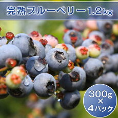 【ふるさと納税】33-02完熟ブルーベリー1.2kg(300g×4パック)