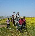 【ふるさと納税】観音山乗馬クラブ 乗馬体験引き馬コース15分&道の駅さかいお買い物券セット