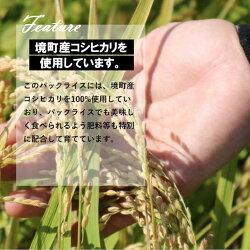 【ふるさと納税】低温製法米パックライス180g×40個(茨城県境町産コシヒカリ使用) 画像1