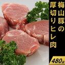 【ふるさと納税】塚原牧場の幻の豚「梅山豚」厚切りヒレ肉480g(160g×3個)