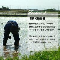 【ふるさと納税】<2019年11月発送分>令和元年産茨城県のお米4種食べくらべ20kgセット