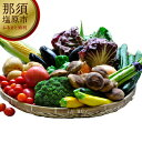 【ふるさと納税】季節の野菜詰め合わせセット【 栃木県 那須塩原市 】