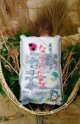 ごはんソムリエが選んだお米 2017年産 栃木県北部産コシヒカリ 1等米100% 10kg
