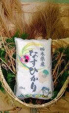 【ふるさと納税】ごはんソムリエが選んだお米2017年産栃木県北部産なすひかり1等米100%10kg