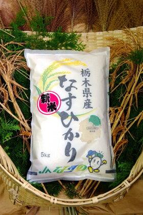 ごはんソムリエが選んだお米 2017年産 栃木県北部産なすひかり 1等米100% 5kg