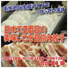 【ふるさと納税】日本で2番目の美味しさを目指す餃子セット