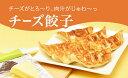 【ふるさと納税】「宇都宮餃子館」チーズ餃子 960g(48個)