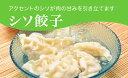 【ふるさと納税】「宇都宮餃子館」シソ餃子 960g(48個)