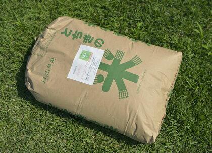 新米 喜連川コシヒカリ 杉之内農産 10Kg玄米 平成29年度産