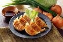 【ふるさと納税】とんきっき野菜餃子 90個(計1.6kg)