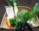 【ふるさと納税】No.002 下野市産かんぴょう&野菜の詰め...