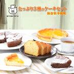 【ふるさと納税】たっぷり3種のケーキセット