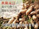 〔B-37〕那須町産大粒落花生おおまさり(生)2kg