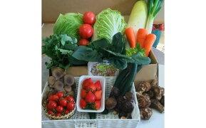 【ふるさと納税】A-03赤城南麓で育った季節の野菜