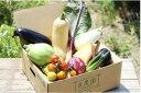 群馬県前橋市で買える「【ふるさと納税】A-07 良農園の旬野菜ギフト【※限定50セット】」の画像です。価格は10,000円になります。