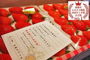 【ふるさと納税】I-53いちご3品種以上食べ比べセット計6パック