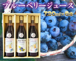 【ふるさと納税】No.041【6本セット】40%果汁入りブルーベリージュース720ml