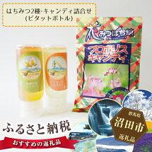 【ふるさと納税】No.005はちみつ2種(ピタットボトル)・キャンディ詰合せ
