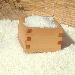 【ふるさと納税】No.046坂本のコメコシヒカリ10kg
