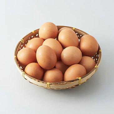 【ふるさと納税】岩田のおいしい卵厳選大玉50個 (10個入り×5パック)【1081150】