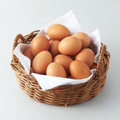 【ふるさと納税】岩田のおいしい卵 [商品価格に関しましては、リンクが作成された時点と現時点で情報が変更されている場合がございます。]