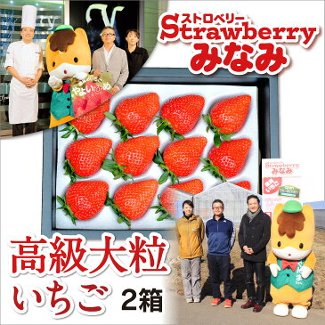 【ふるさと納税】パティシエ鎧塚利彦氏とコラボしたストロベリーみなみの「高級大粒いちご」2箱
