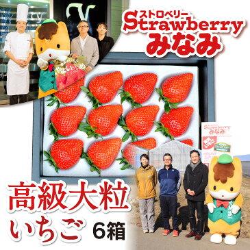 【ふるさと納税】パティシエ鎧塚利彦氏とコラボしたストロベリーみなみの「高級大粒いちご」6箱