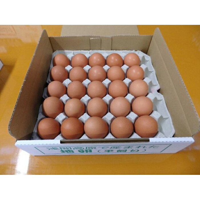 有名レストラン、一流老舗旅館で使われる「浅間とり牧場卵」大玉25個