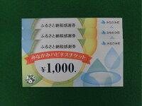 ふるさと納税感謝券(みなかみハピネスチケット)