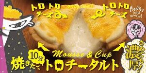 【ふるさと納税】【ジャック・ザ・タルトファンタジー】みなかみ焼きたてチーズタルト(5個入り)