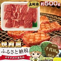 【ふるさと納税】No.002上州牛(焼肉用)約500g