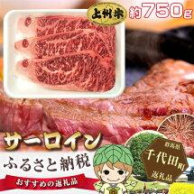 【ふるさと納税】No.015上州牛(サーロイン)約750g