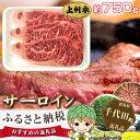 【ふるさと納税】No.015 上州牛(サーロイン)約750g...