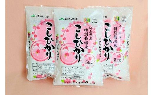 【ふるさと納税】さいたま市産特別栽培米こしひかり15kg【11100-0037】
