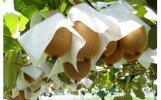 【ふるさと納税】キウイフルーツ4kg(山下果樹園)