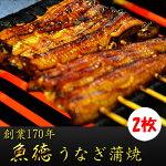 【ふるさと納税】創業170年うなぎ蒲焼2枚セット