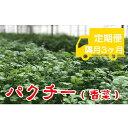 【ふるさと納税】AK-2 《隔月定期便計3回》水耕栽培【パクチー】1kg(100g×10袋)セット 食品 野菜 葉...