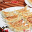 【ふるさと納税】国産餃子◆送料無料◆たっぷり100個入り 3
