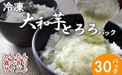 冷凍大和芋とろろパック【11218-0367】