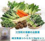 【ふるさと納税】三芳町の季節のお野菜と埼玉県産コシヒカリ3kgセット