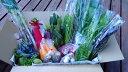 【ふるさと納税】旬の野菜セット