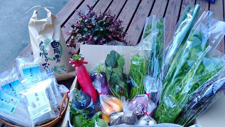 【ふるさと納税】旬の野菜と加工品(麦茶、乾麺)、精米10kgのセット:埼玉県小川町
