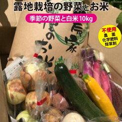 【ふるさと納税】No.020季節の野菜と白米10kgのセット