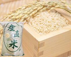 【ふるさと納税】No.036埼玉県産彩のかがやき玄米10kg