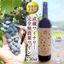 【ふるさと納税】No.039 武蔵ワイナリー 完全無農薬ワイ...
