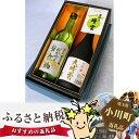 【ふるさと納税】No.008 和紙と有機の郷からの贈り物 晴...